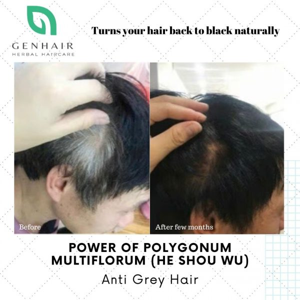 natural shampoo that can turn white grey hair black