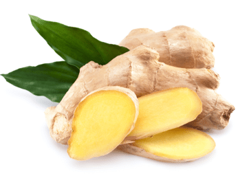 ginger hair loss growth herb