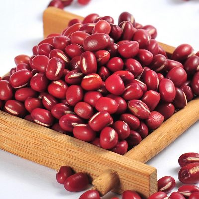 Phaseolus Calcaratus Roxb red bamboo beans
